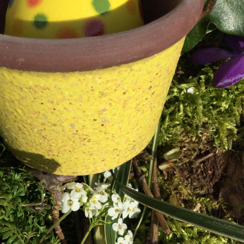 Blumentopf, 9134 Gelb Glimmer