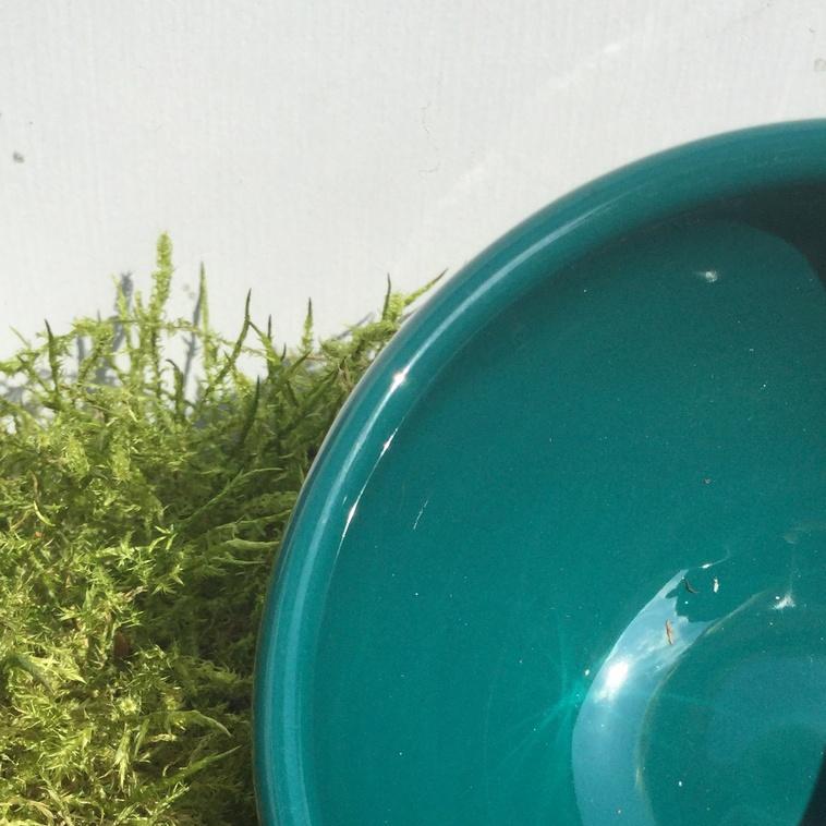 Schalenrand, 9373 Jadegrün