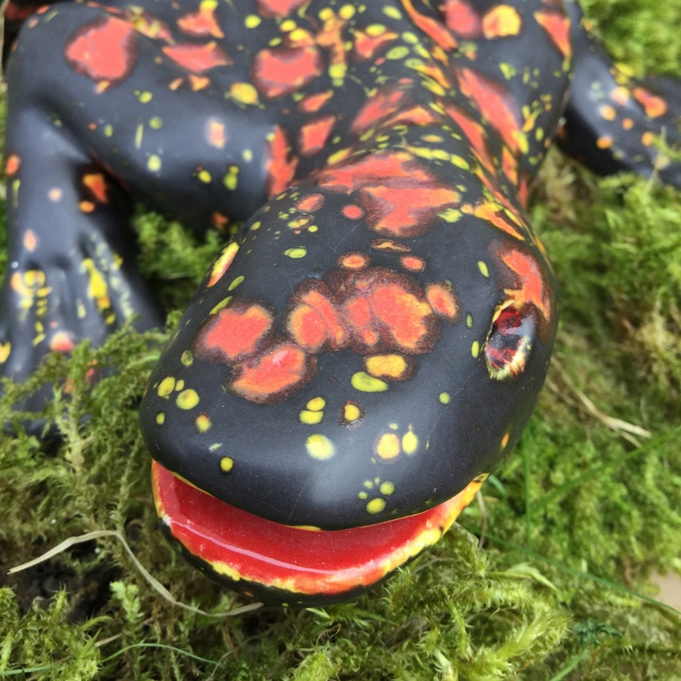 Salamander, 9489 Schwarz matt