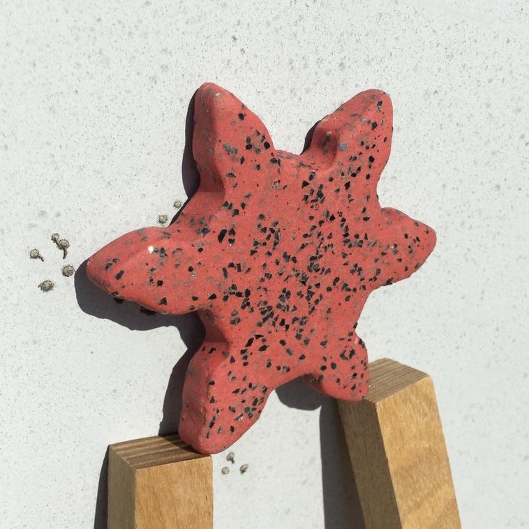 Stern, 9646 Zauberrot